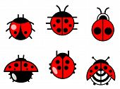Ladybugs And Beetles Icons Set