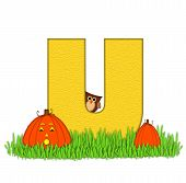 Alphabet Pumpkin Patch U