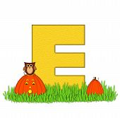 Alphabet Pumpkin Patch E