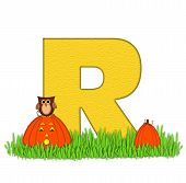 Alphabet Pumpkin Patch R