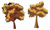 Stylized Autumn Tree