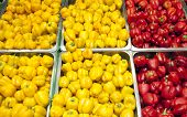 Bell Pepper Yellow And Red