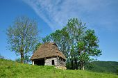 Wooden Stable With Thatched Roof In The Mountains