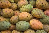 stock photo of nopal  - Close up detail view at the prickly pears - JPG