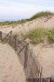 Dunes in Provincetown,Massachusetts