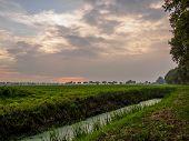 Stream In Dutch Meadow