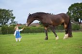 stock photo of child feeding  - Cute Little Baby Girl Feeding A Big Horse On A Ranch In Autumn - JPG