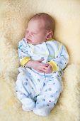 Newborn Baby Boy Sleeping On A Sheepskin