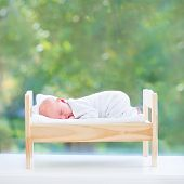 image of girl next door  - Tiny Newborn Baby Sleeping In A Toy Bed Next To A Big Window Into The Garden With Green Summer Trees - JPG