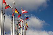 Group Og Europeans Flag