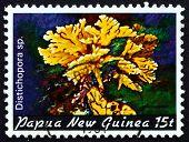 Postage Stamp Papua New Guinea 1982 Distichopora, Coral