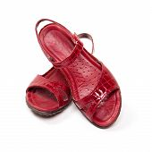 An Elegant Red Lady's Sandals