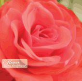 Romantic vector greeting card with rose.