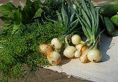 fresh vegetables and verdure