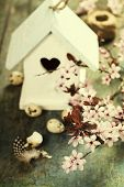 Easter composition with little birdhouse and Cherry Blossom branches