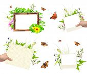 Collection of summer frames with photo, green leaves, flowers and insects. Isolated on white background