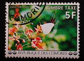 Comoros - Circa 1977 Year: Postage Stamp Printed Comoros Shows Image Of A Butterfly On A White Exoti