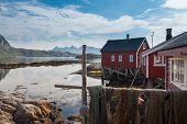 image of lofoten  - Typical red rorbu fishing hut in town of Svolvaer on Lofoten islands in Norway lit by midnight sun - JPG