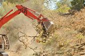 foto of track-hoe  - track hoe excavator clearing trees and brush from a hillside in preperation for a new commerical construction development - JPG