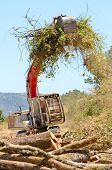 stock photo of track-hoe  - track hoe excavator clearing trees and brush from a hillside in preperation for a new commerical construction development - JPG