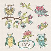 Cute cartoon vector owls, flowers, brunche.