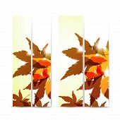 Autumn banner set