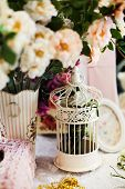 Vintage bird cage in pink romantic still life