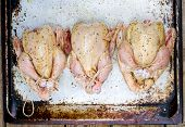 stock photo of crude  - fresh crude farmer chicken on a wooden background - JPG