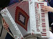 pic of accordion  - hand of a young woman plays the accordion keyboard - JPG
