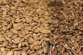 stock photo of pecan  - close up of Pecans and almonds background - JPG