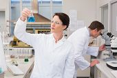 stock photo of beaker  - Scientists working with microscope and beaker in laboratory - JPG