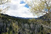 picture of blanket snow  - A snow blanket is still over San Juan mountains in Colorado - JPG