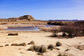 pic of arid  - Arid landscape at daytime in Bardenas Reales Navarra Spain - JPG
