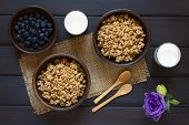 foto of cereal bowl  - Dried berry and oatmeal breakfast cereal in rustic bowls with glasses of milk and fresh blueberries photographed overhead on dark wood with natural light - JPG
