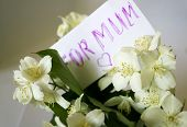 stock photo of mums  - Jasmine bouquet with note for mum with heart - JPG