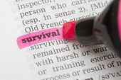 image of survival  - Dictionary definition of the word Survival with pen - JPG