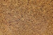 picture of homogeneous  - Cork board - JPG