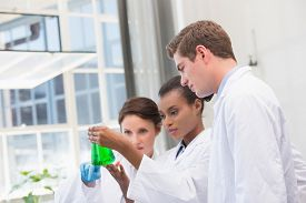 image of beaker  - Scientists analyzing beakers with chemical fluid in laboratory - JPG