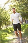 stock photo of portrait middle-aged man  - Middle Aged Man Jogging In Park - JPG