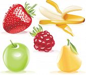 Vector detailed fruits icon set