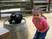 pic of farm animals  - Lots of fun for a little girl in a petting zoo - JPG