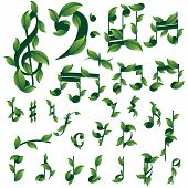 Set of floral musical notes