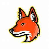Sports Mascot Icon Illustration Of Head Of A Dhole, Asiatic Wild Dog, Indian Wild Dog, Whistling Dog poster