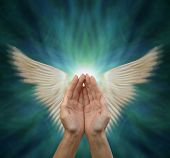 Sending Out Angelic Healing Energy - Cupped Female Hands With Motion Blurred Angel Wings Either Side poster