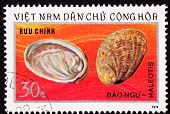 Vietnamese Postage Stamp Empty Abalone Shells Haliotis Mother Of Pearl