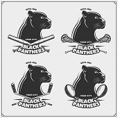 Football, Lacrosse, Baseball And Hockey Badges And Labels. Sport Club Emblems With Panther. poster