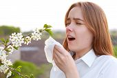 Seasonal Allergy. Pretty Young Female Blows Nose And Sneezes, Stands In Front Of Blooming Tree, Bein poster