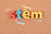 Stem Education. Science Technology Engineering Mathematics. Stem Word On Cork Board With Education E poster