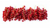 Various Fresh Summer Fruits. Ripe Red Currants On White Background. Ripe Red Currants Isolated On Wh poster