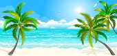 Landscape Of The Tropical Shore. The Landscape Of The Sea Shore With Palm Trees. Sea Shore With Palm poster